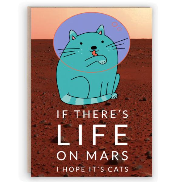 space cat card