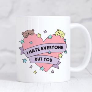 Cute and funny valentines mug