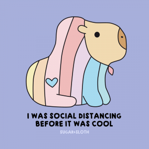 social distancing capy