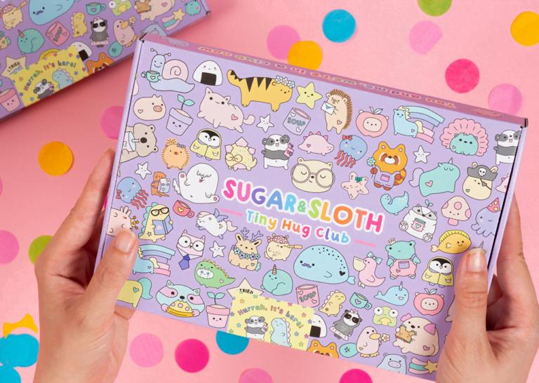 Tiny Hug Club pin and stationery subscription box